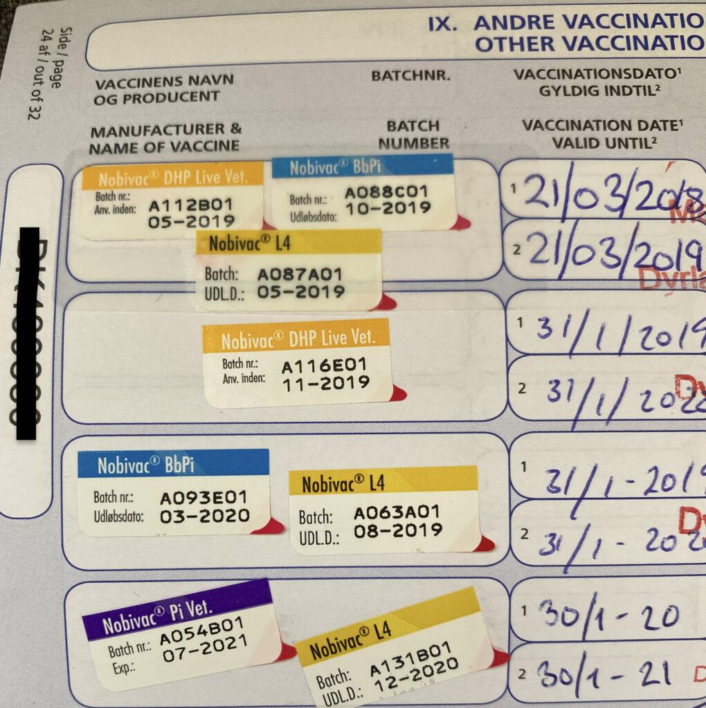 oversigt over vaccinationer i en hunds pas